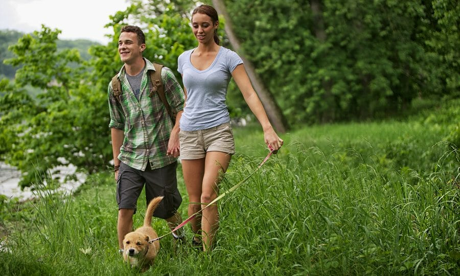 Pet Policy - Woodlands of Charlottesville - Pet Friendly Condo Rentals in Charlottesville
